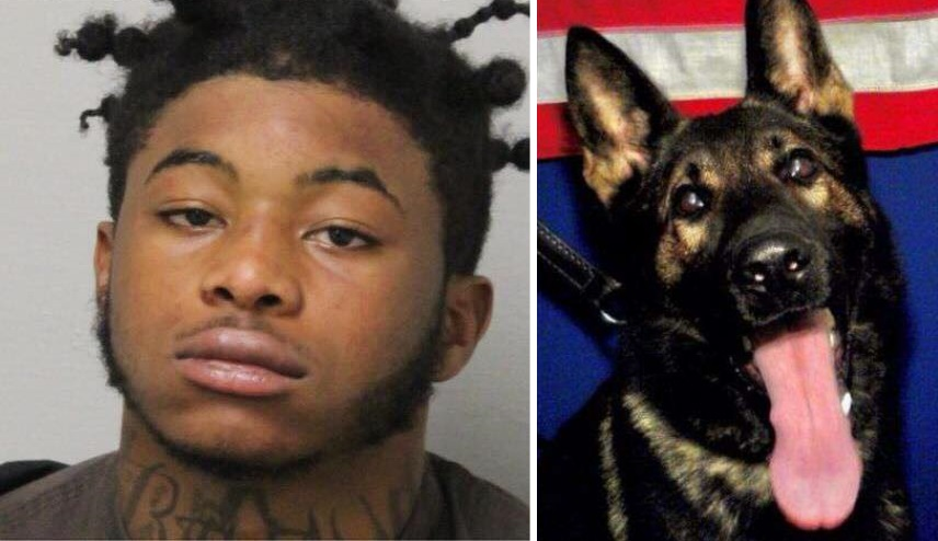 Florida man sentenced to 25 years in police dog killing case, kidnapping case