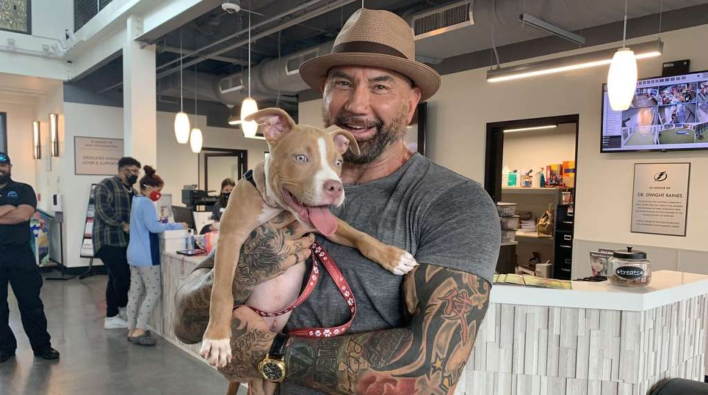 Actor Dave Bautista adopts neglected puppy from Florida animal shelter